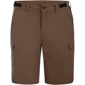 Icepeak Braswell Shorts Men, chocolate brown